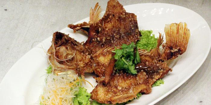 Fish 2 from COCA at Suntec at City Hall, Singapore