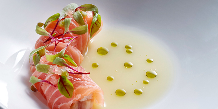 Salmon Tiradito from Akira Back in JW Marriott Hotel Singapore South Beach in City Hall, Singapore