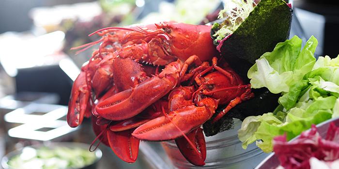 Chilled Lobster, Cafe Marco, Tsim Sha Tsui, Hong Kong