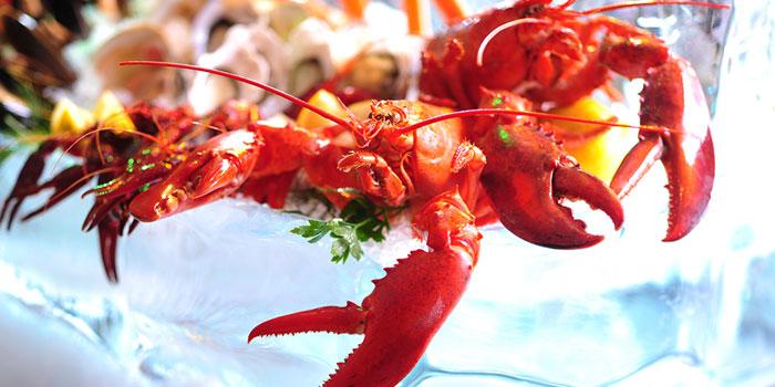 Jet Fresh Seafood, add@Prince, Tsim Sha Tsui, Hong Kong