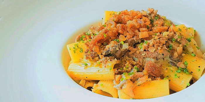 Rigatoni with Duck Ragout from The Terminal in Yio Chu Kang, Singapore