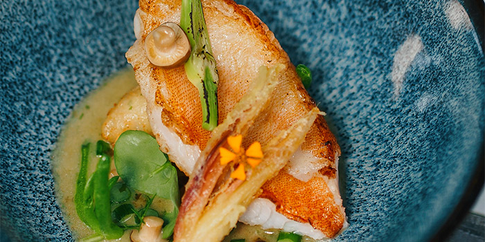 Seared Line-Caught Snapper from Chi Kinjo in Telok Ayer, Singapore