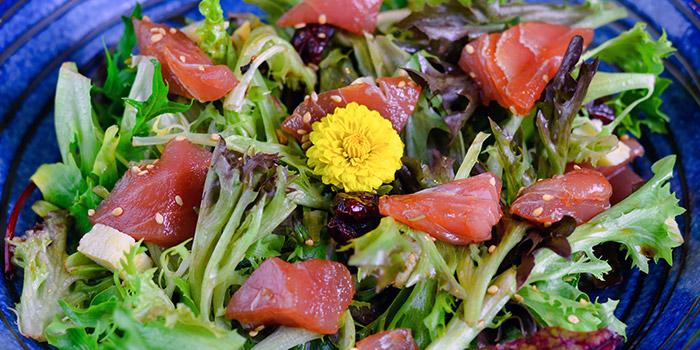 Maguro Zuke Salad from Ishinomaki Grill & Sake (Palais Renaissance) in Orchard, Singapore