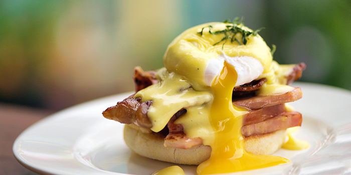 Eggs Benedict from Privé Paragon in Orchard, Singapore