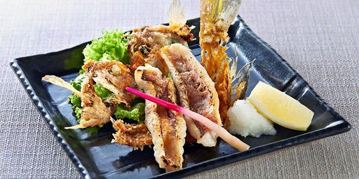 Grilled Fish Bone Deep Fried from Sumiya at Suntec City in Promenade, Singapore