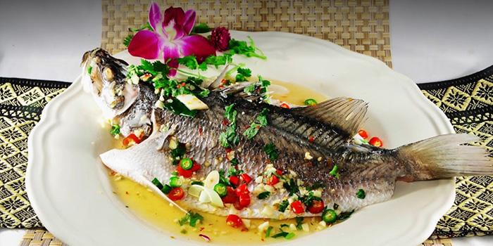 Three Flavour Fish from Thai5 in Bugis, Singapore