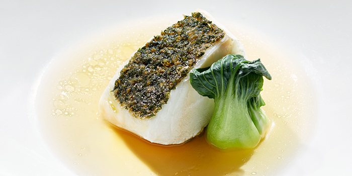 Shiso Sea Bass from Akira Back in JW Marriott Hotel Singapore South Beach in City Hall, Singapore