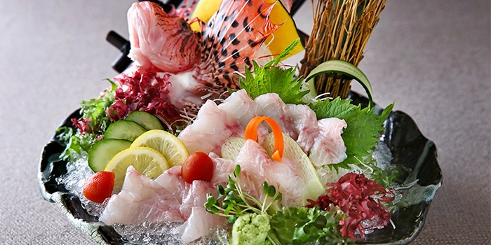 Air-flown Fish Sashimi from Sumiya at Suntec City in Promenade, Singapore