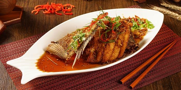 Dish 3 at Wang Dynasty