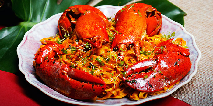8 Feet Fettuccine with Lobster (10 Jan to 19 Feb) from Amo in Clarke Quay, Singapore