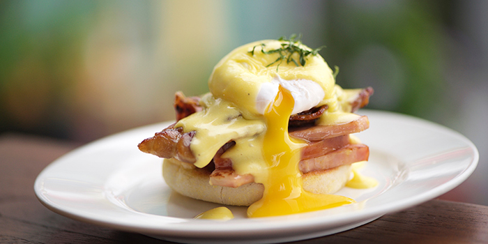 Eggs Benedict from Privé Somerset in Orchard, Singapore