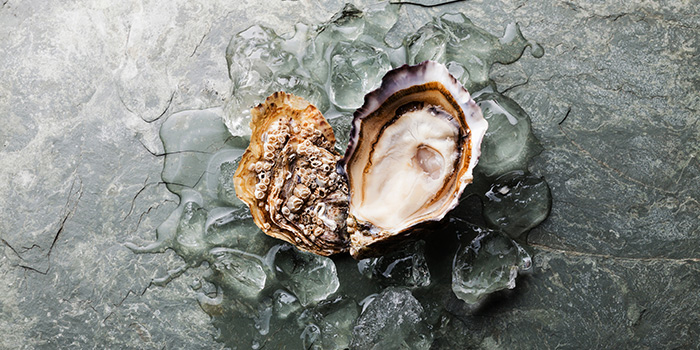 Oyster Heart (14 Feb) from Greenwood Fish Market @ Quayside Isle in Sentosa, Singapore