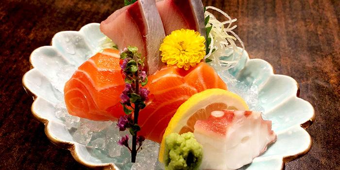Sashimi from Rakuichi Japanese Restaurant in Dempsey, Singapore