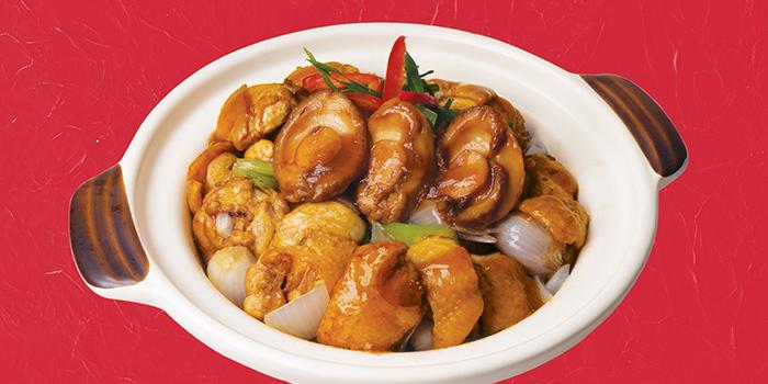 Wok Fried Chicken with Abalone in Clay Pot, Mall Café, Tsim Sha Tsui, Hong Kong
