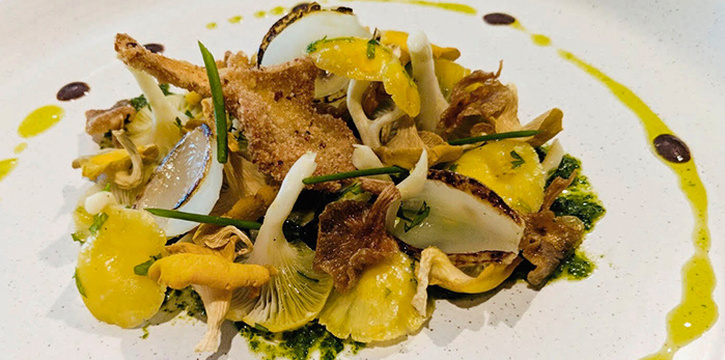 Textures of Oyster Mushrooms from Buko Nero in Tanjong Pagar, Singapore