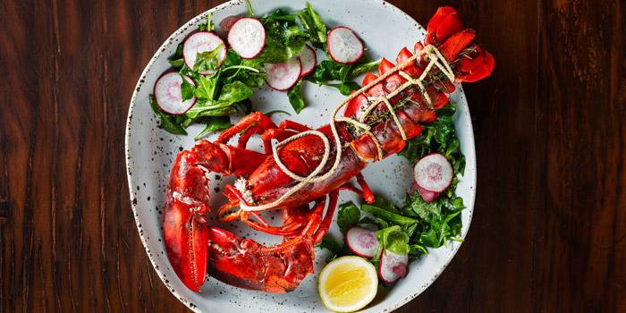 Hanged Live Maine Lobster from Le cochon Blanc at 26 Soi Phrom Chit Khlong Tan Nuea, Watthana Bangkok