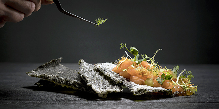 Salmon Ceviche Tartar from from Anti:dote at Fairmont Singapore in City Hall, Singapore