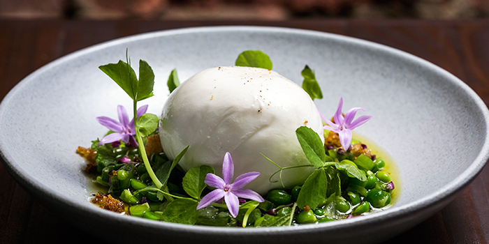Burrata & Peas from Maggie Joan