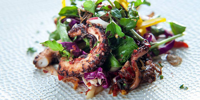 Grilled Octopus from Maluku Restaurant, Ubud, Bali