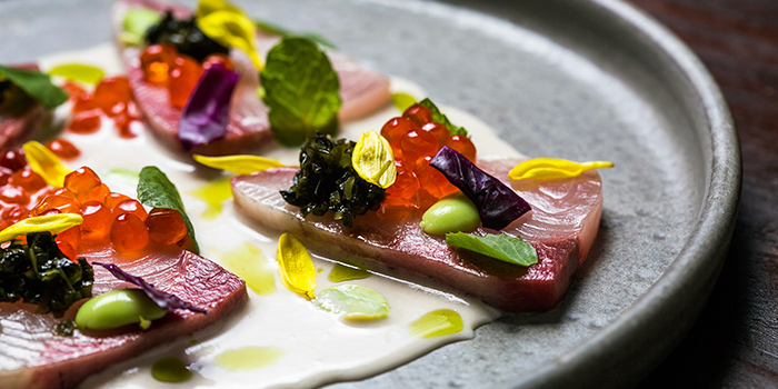 Hamachi from Maggie Joan