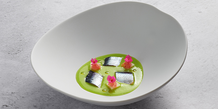 Sardine, Iwashi, Cucumber Gazpatxo, Finger Lime from Basque Kitchen by Aitor in Telok Ayer, Singapore