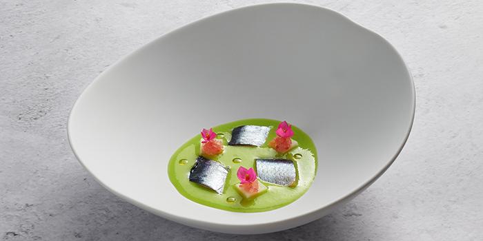 Sardine, Iwashi, Cucumber Gazpatxo, Finger Lime from Basque Kitchen by Aitor in Telok Ayer, Singapore