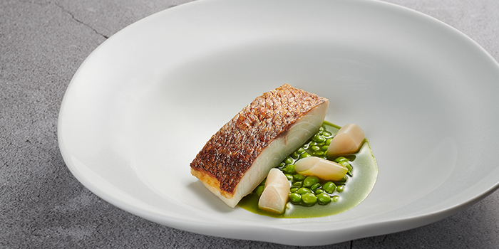 Red Sea Bream, Salsa Verde, Sweet Peas, Razor Clam from Basque Kitchen by Aitor in Telok Ayer, Singapore