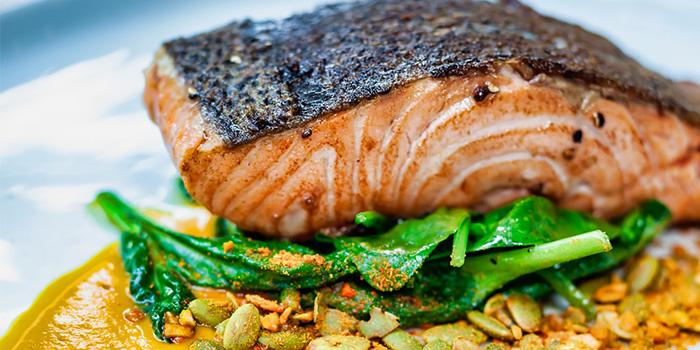 Norwegian Salmon from PORTA in Park Hotel Clarke Quay in Robertson Quay, Singapore