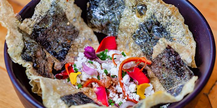 Spicy Tuna Tartare from PORTA in Park Hotel Clarke Quay in Robertson Quay, Singapore