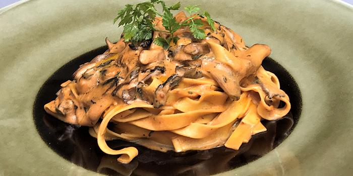Tagliatelle with Mascarpone cream sauce from ALBA 1836 Italian Restaurant in Duxton, Singapore