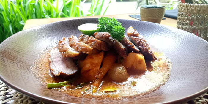 Thai Red Curry Duck from Maluku Restaurant, Ubud, Bali