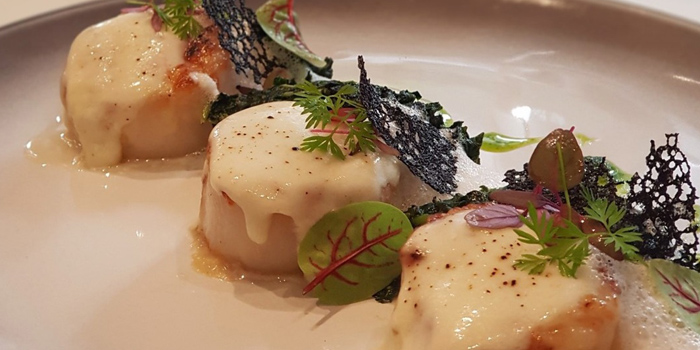 Seared Scallops from The Ninth Cafe