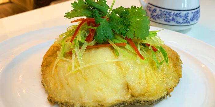 Black Cod Deep Fired in Soy Sauce from Ruenros Rama3 at Bangkok Square Rama3 Bang Phong Phang, Yan Nawa Bangkok