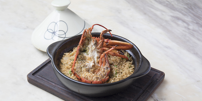 Boston Lobster Tagine, The Pawn, Wan Chai, Hong Kong