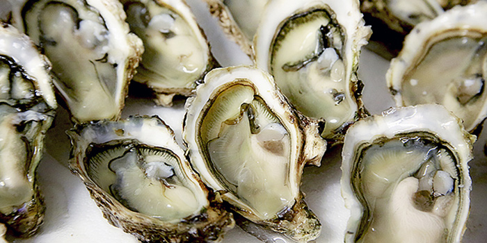 Freshly Shucked Oysters from The FernTree Cafe at Hotel Miramar in River Valley, Singapore