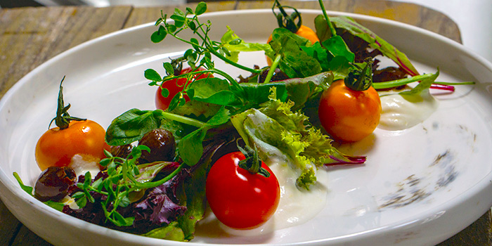 Tomato Salad from Oxwell & Co on Ann Siang Road in Chinatown, Singapore