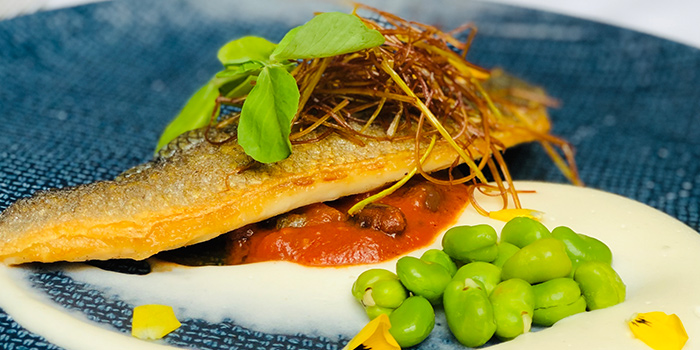Pan Seared Seabass from ALBA 1836 Italian Restaurant in Duxton, Singapore