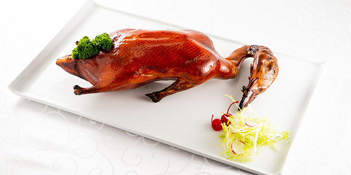Roasted Irish Silver Hill Duck from Famous Treasure in City Hall, Singapore