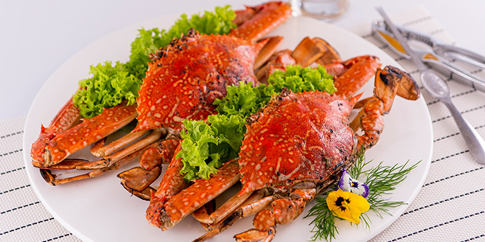 Salt Baked Crab from Famous Treasure in City Hall, Singapore