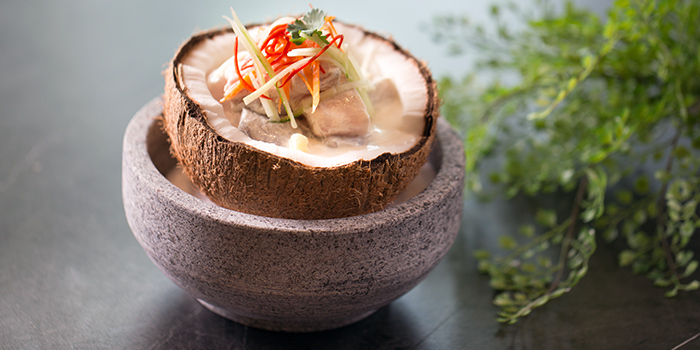 Island Ceviche from Native Kitchen at à Village Hotel at Sentosa in Sentosa, Singapore