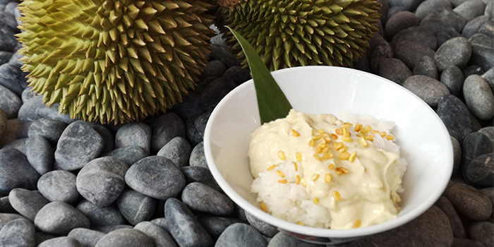 Durian Pengat with Sticky Rice from Spice Brasserie in Little India, Singapore