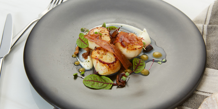 Scallop Dishes from 1823 Tea Lounge by Ronnefeldt at Gaysorn Plaza G/F, 999 Phloen Chit Rd Bangkok