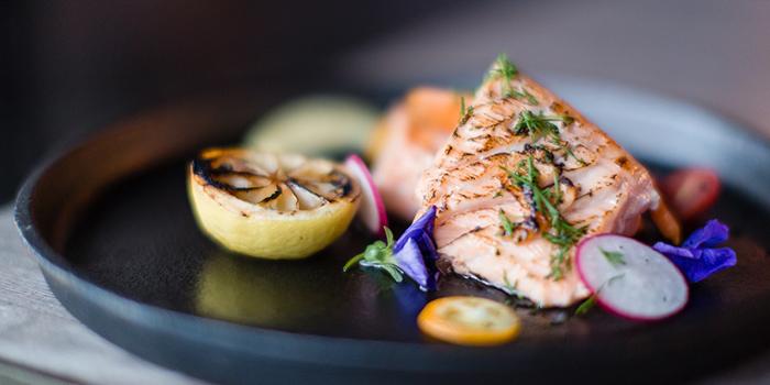 Slow Cooked Salmon, The Grill Room, Tsim Sha Tsui, Hong Kong
