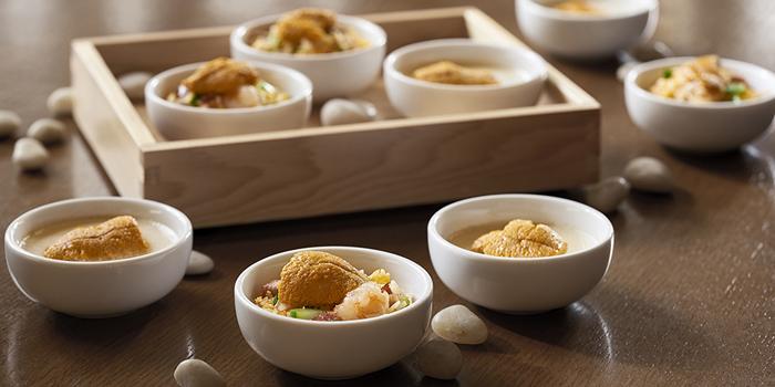 Urchin Fried Rice, Cafe, Tsim Sha Tsui, Hong Kong
