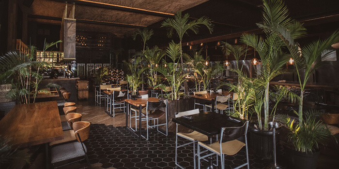 Bar from Salazon Bali