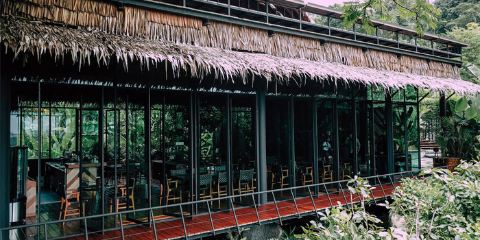 Atmosphere of Three Monkeys Restuarant in Kathu, Phuket, Thailand