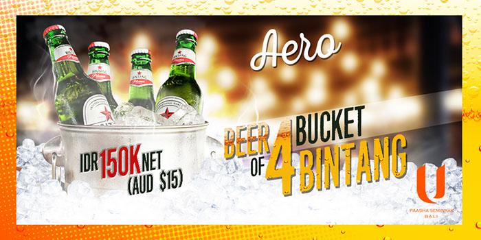 Beer Bucket Promo