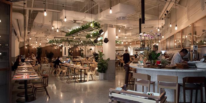 Interior, Greenhouse, Causeway Bay, Hong Kong
