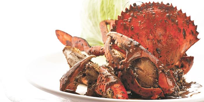 Black Pepper Crab from JUMBO Seafood (Jewel Changi Airport) in Changi, Singapore