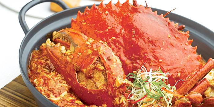 Chilli Crab from JUMBO Seafood (Jewel Changi Airport) in Changi, Singapore